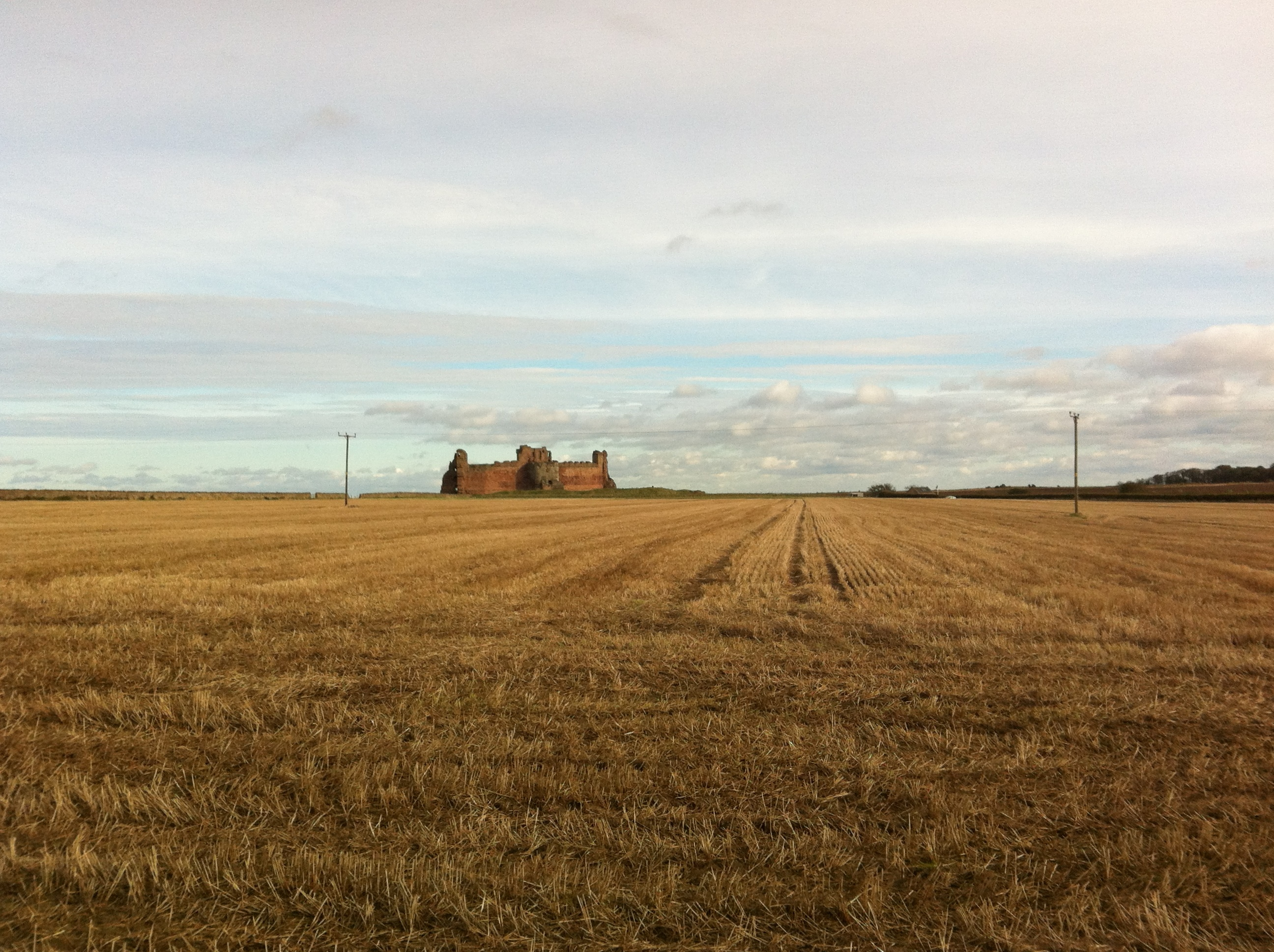 A photo taken by Hayley on her walk to Tantallon from the road. It shows the almost red castle in the distance, sitting in front of it is a large golden field of crops with a moody sky above.